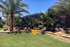 Landscape Makeover The Villages FL