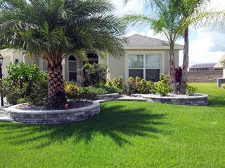 Brandon's Landscaping - The Villages FL